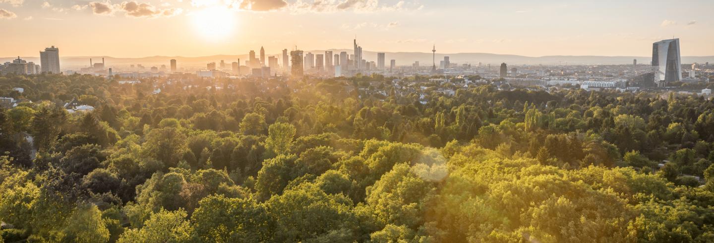 Blick auf die Skyline Frankfurts bei Sonnenschein
